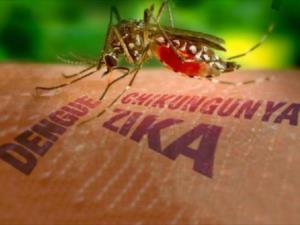 Virus Zika di Indonesia